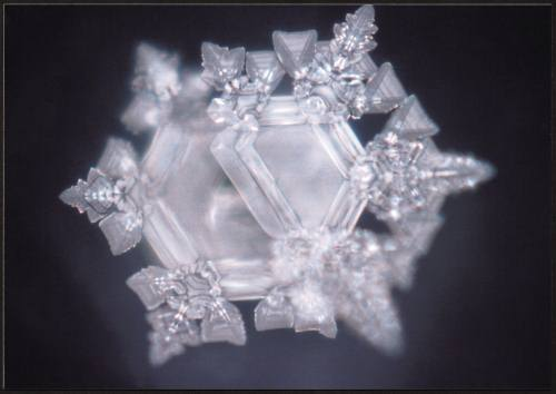 Zamzam-Crystal-Dr Emato